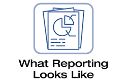 What Reporting Looks Like
