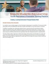 Ensure Students Are Learning: Faculty Descriptions of Innovative Teaching Practices: Creating a Learning Environment Through Volunteer Work